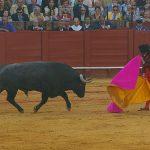 Morante